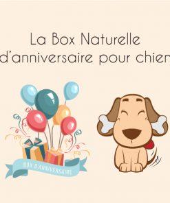 La Box Naturelle d'anniversaire pour chien