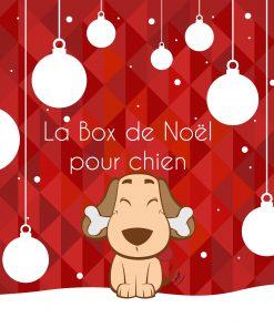 La Box de Noël pour chien - La Box Naturelle