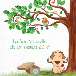 La Box Naturelle de printemps pour chien