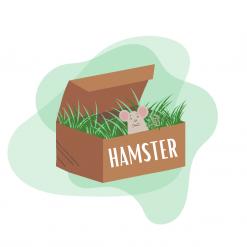 Box pour hamster