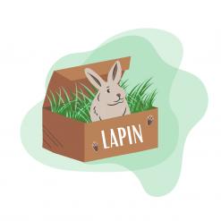 Box pour lapin (2)