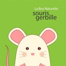 La Box Naturelle pour gerbille et souris
