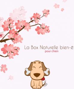 La Box Naturelle bien-être pour chien