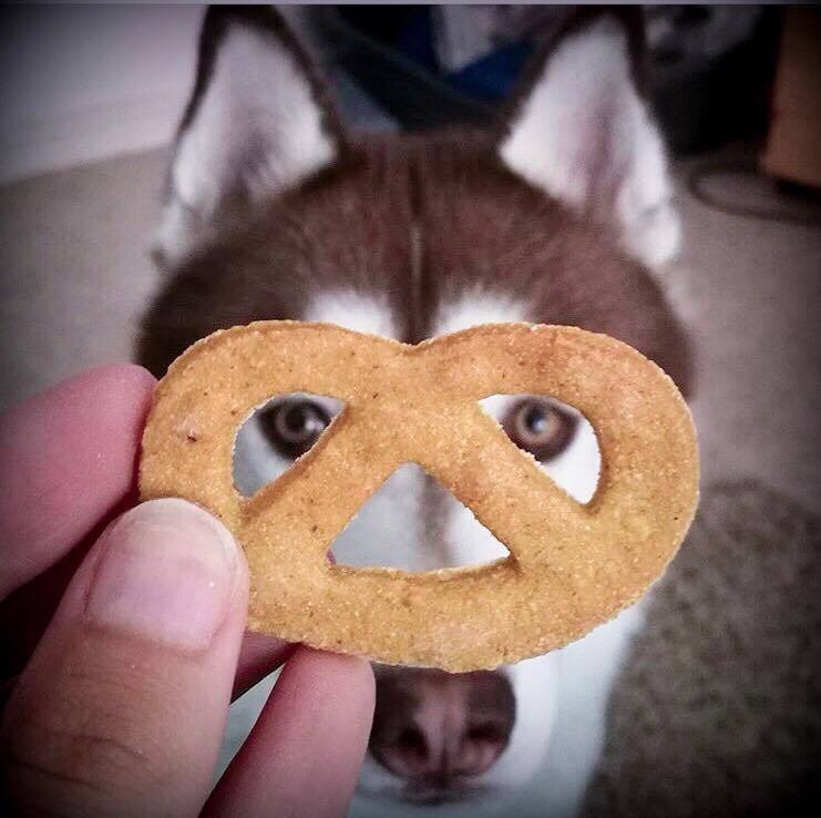 Chichi&Petzel 6 - Biscuits pour chien made in France - La Box Naturelle