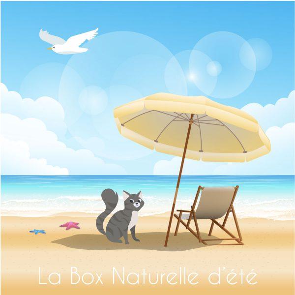 La Box Naturelle d'été pour chat