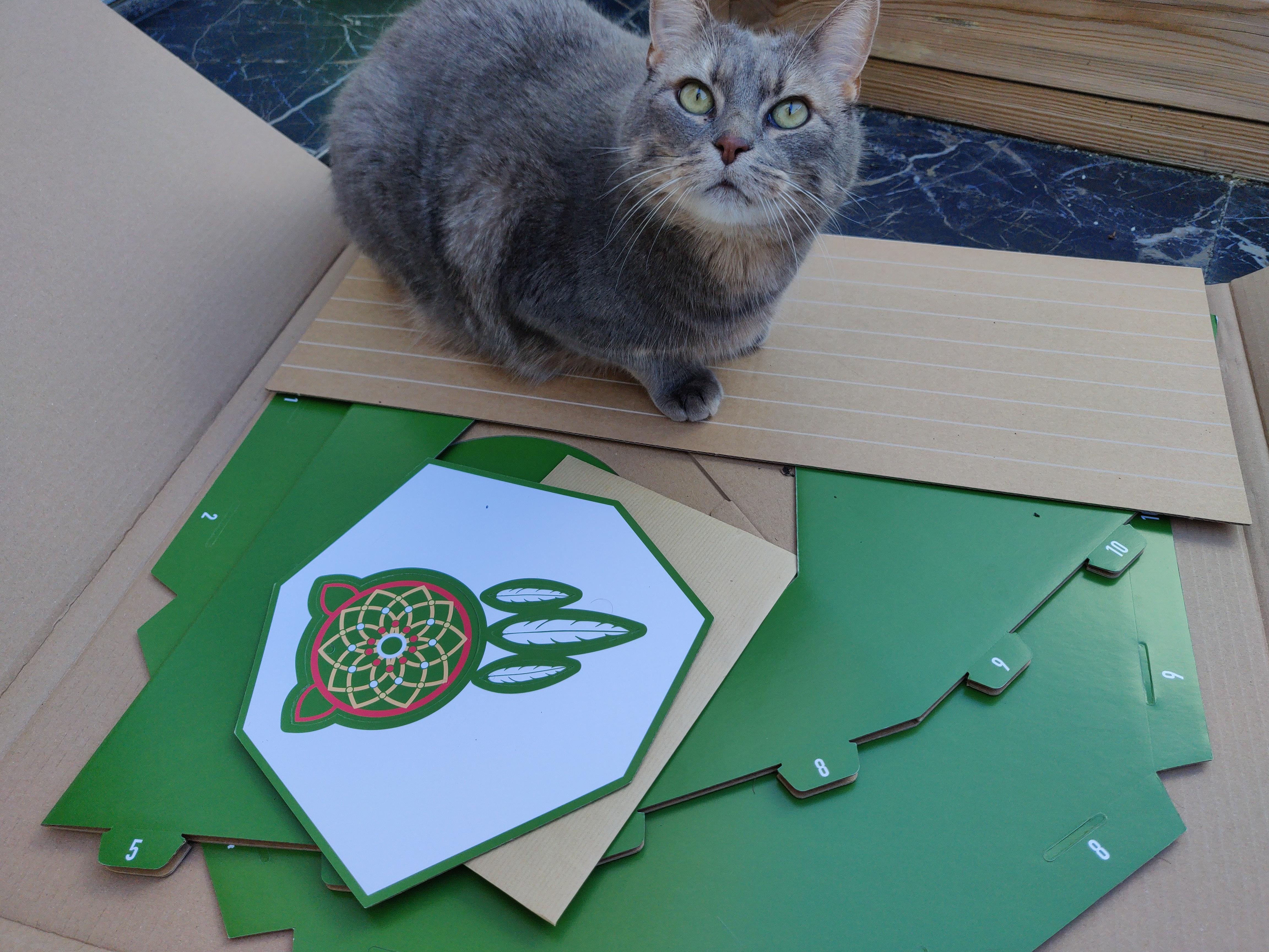 Tipi en carton pour chat - La Box Naturelle 2