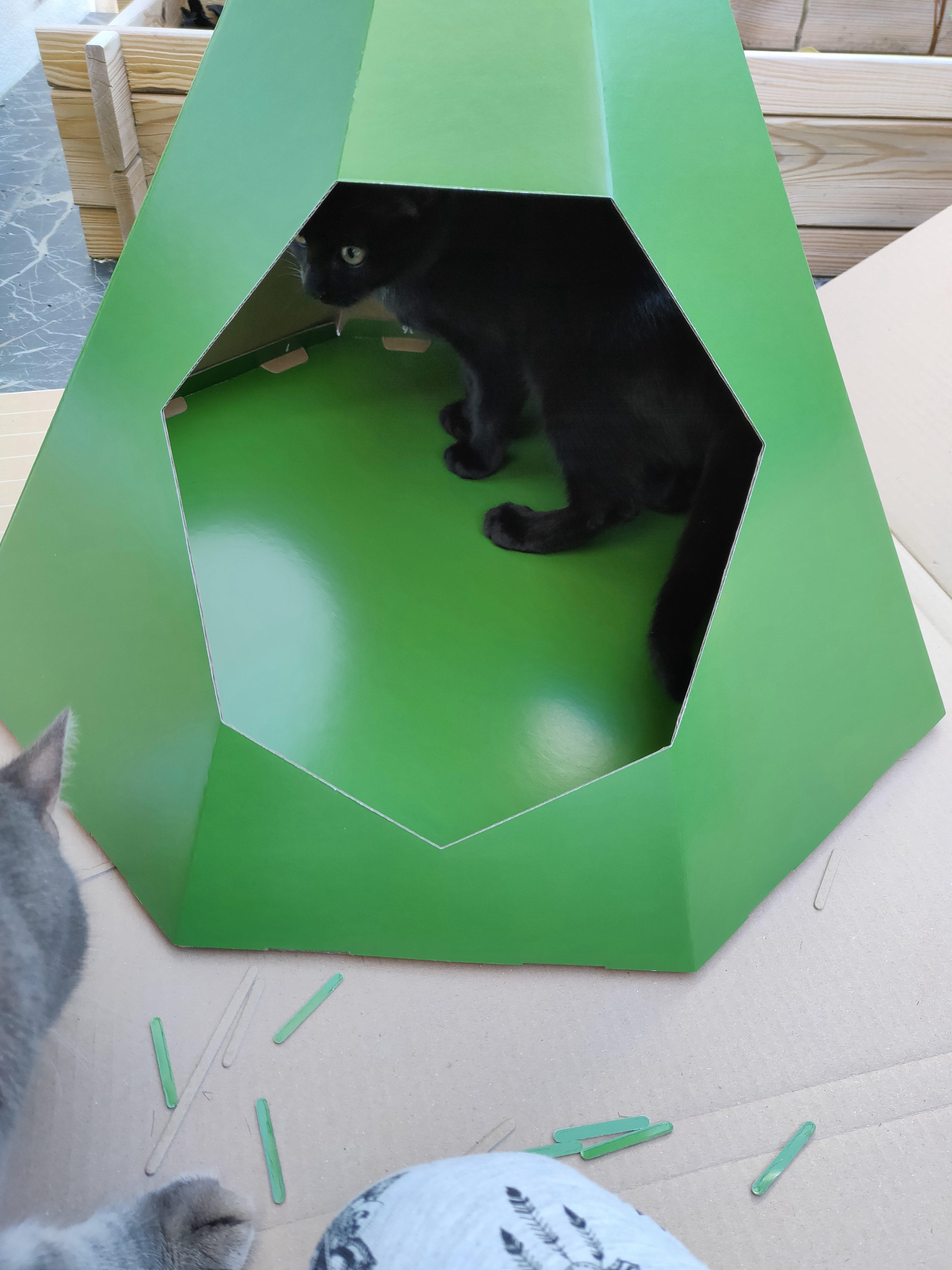 Tipi en carton pour chat - La Box Naturelle 4