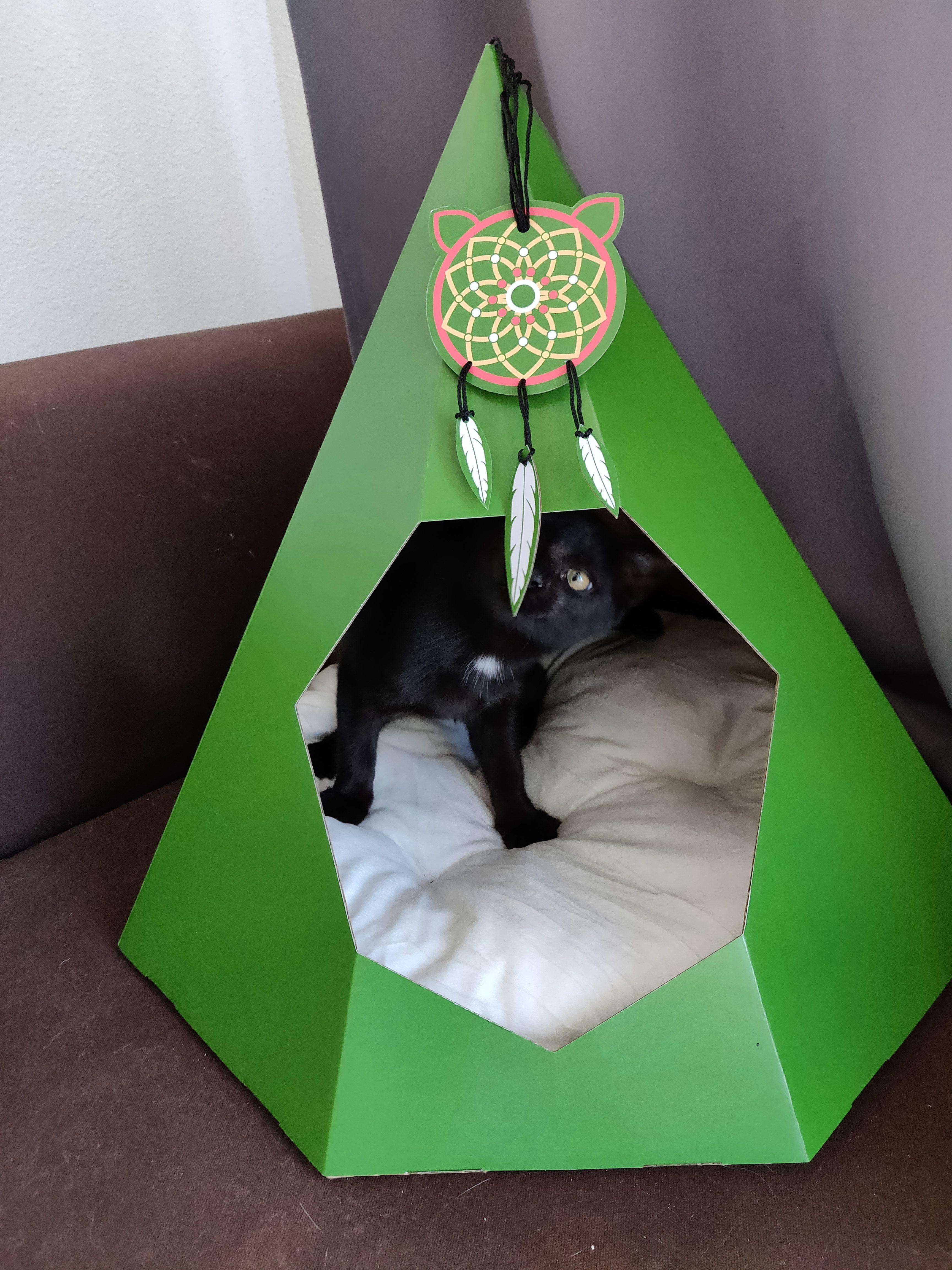 Tipi en carton pour chat - La Box Naturelle 7