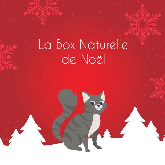 La Box Naturelle de Noël pour chat