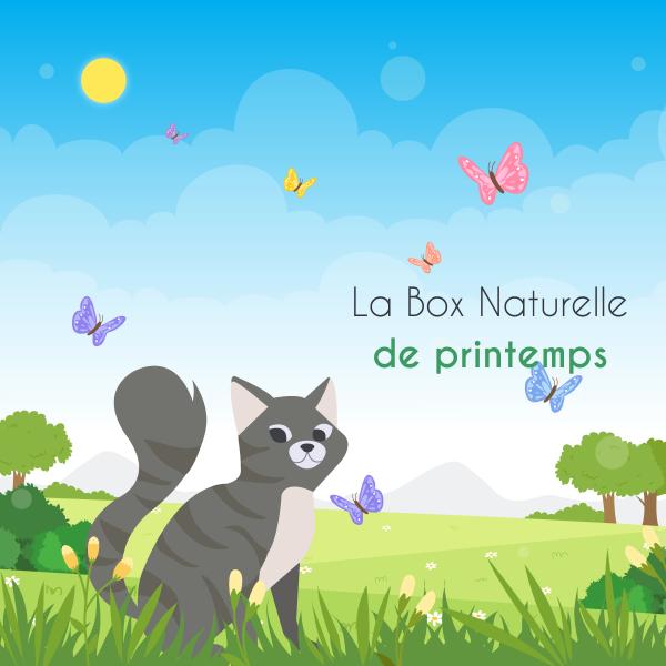 Vignette La Box Naturelle printemps pour chat