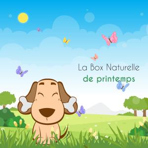 Vignette La Box Naturelle printemps pour chien