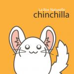 La Box Naturelle pour chinchilla