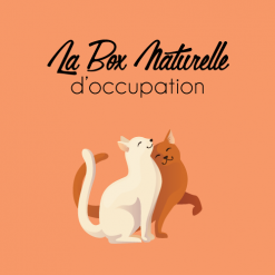 La Box d'occupation pour chat - La Box Naturelle