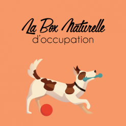 La Box d'occupation pour chien - La Box Naturelle