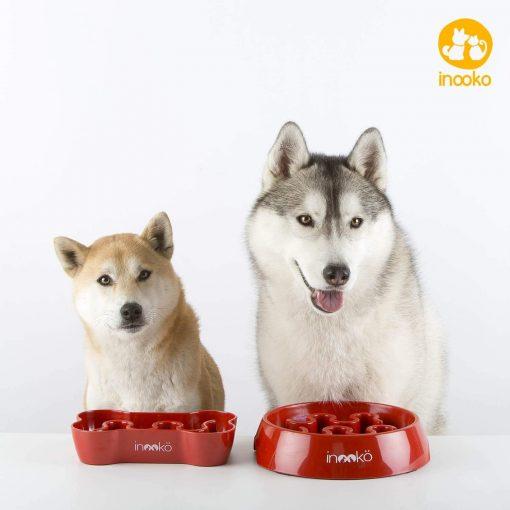 Gamelle anti glouton pour chien - Inooko