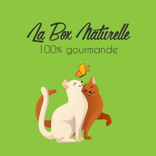 Mini box 100% gourmande pour chat
