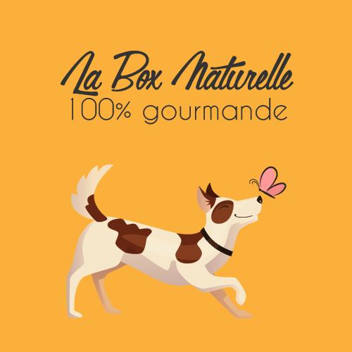 Mini box 100% gourmande pour chien