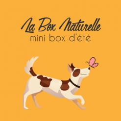 Mini box d'été pour chien - La Box Naturelle
