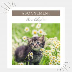 Abonnement box pour chaton - La Box Naturelle