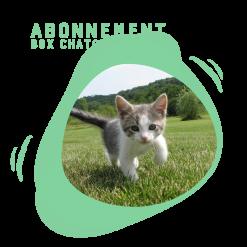 Box pour chaton - La Box Naturelle