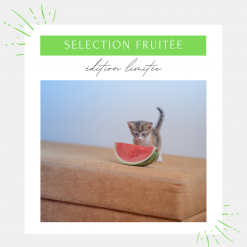 Mini box fruitée chat