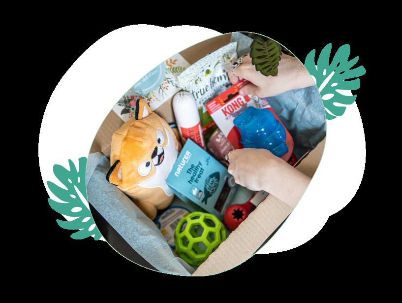 Box pour chiens et chats - La Box Naturelle