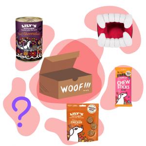 Box d'Halloween pour chien